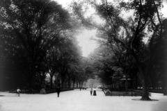 The Mall, Central Park, New York, 1905